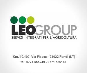 Leo-Group